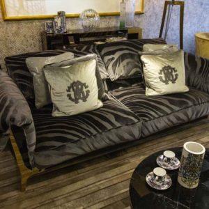 Showroom sofa image