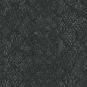 RC17098 Python