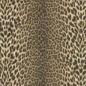 Classic Jaguar natural